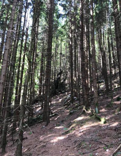 Monte Rodolino-ph-Rosetta Barbetti-12