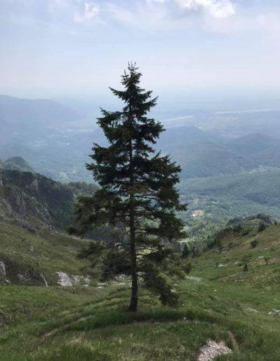 Monte Rodolino-ph-Rosetta Barbetti-16