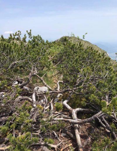 Monte Rodolino-ph-Rosetta Barbetti-29