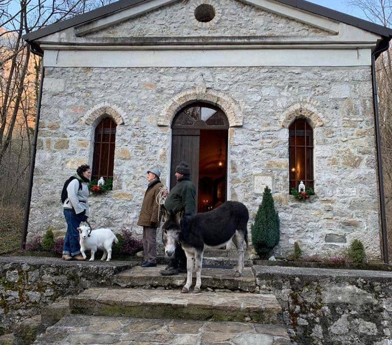 Domenica 19 gennaio – La Benedizione degli Animali