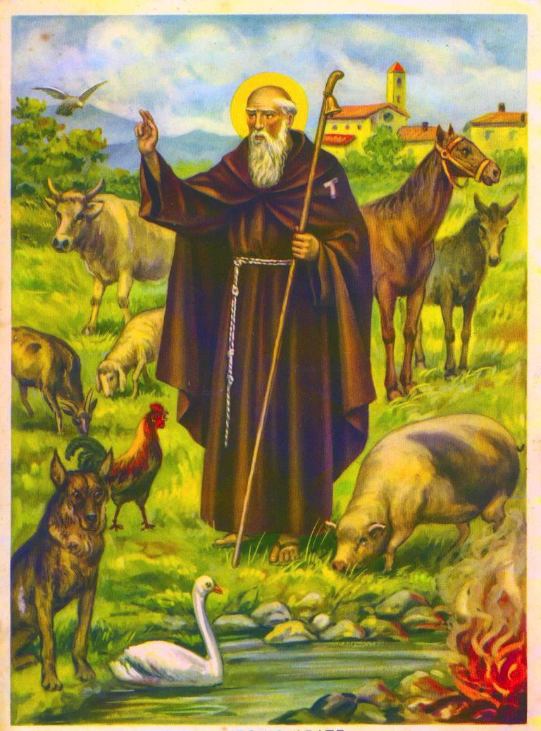 Sant'Antonio Abate - 17 gennaio