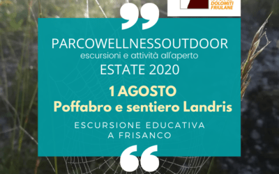 EVENTO ParcoWellnessOutdoor 1 agosto 2020